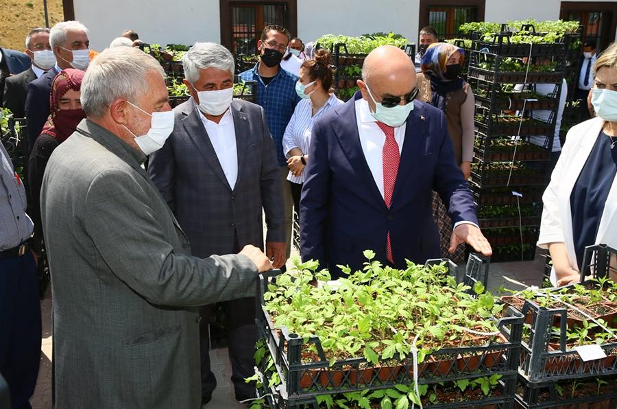 Keçiören`deki çiftçilere ücretsiz sebze fidesi dağıtıldı